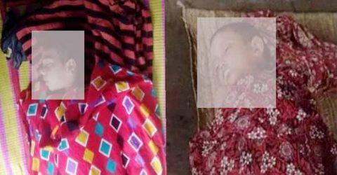 শ্যামনগরে পুকুরের পানিতে ডুবে দুই শিশুর মৃত্যু