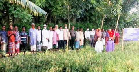 সাতক্ষীরায় কৃষক উদ্বুদ্ধকরনে মাঠ দিবস অনুষ্ঠিত